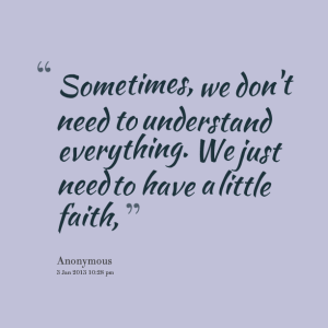 7904-sometimes-we-dont-need-to-understand-everything-we-just